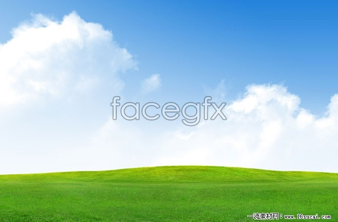 Grass Blue Sky HD pictures