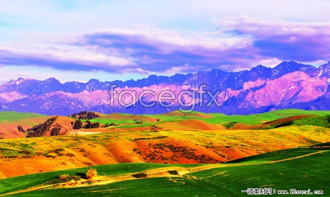 Yellow steppe landscape HD picture