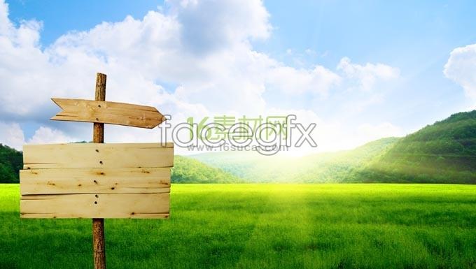 Lawn-beacon