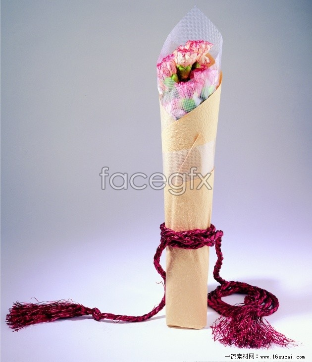 Bouquets of carnations, high definition pictures