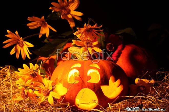 Halloween Jack-o-lanterns high definition pictures
