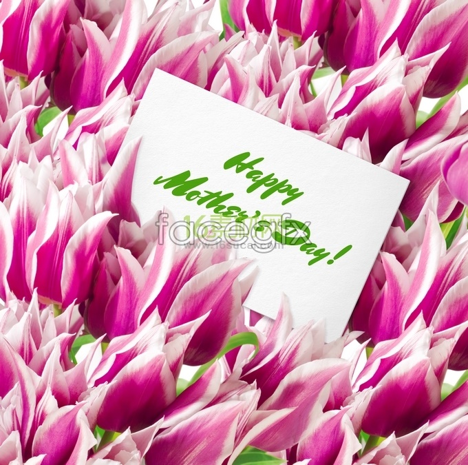 Happy Mother's day flowers HD picture