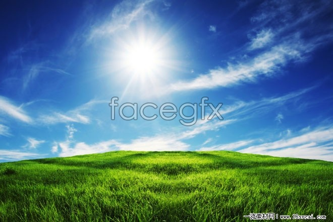 Blue Sky meadow high definition pictures