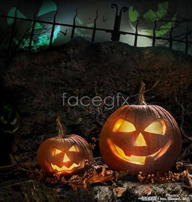 HD Halloween Pumpkin pictures