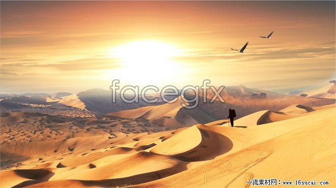 Desert hiking HD Photo