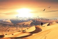 Desert hiking HD Photo