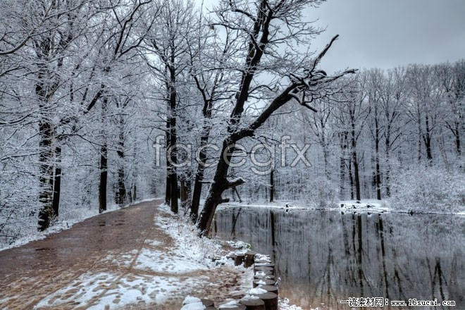 HD winter snow picture