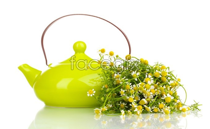 Tea pot flowers HD pictures