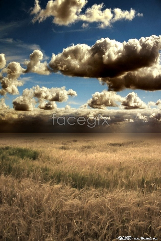 Wilderness landscapes HD photography pictures