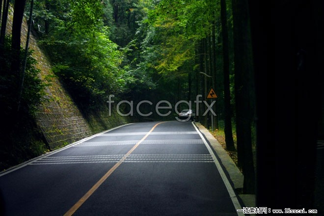 Deep forest roads high definition pictures
