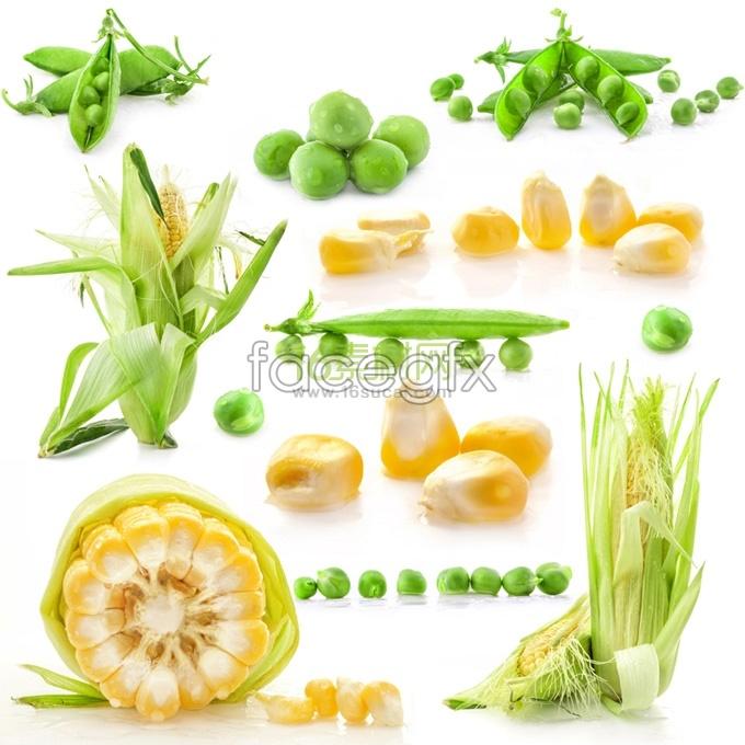 HD vegetable photo