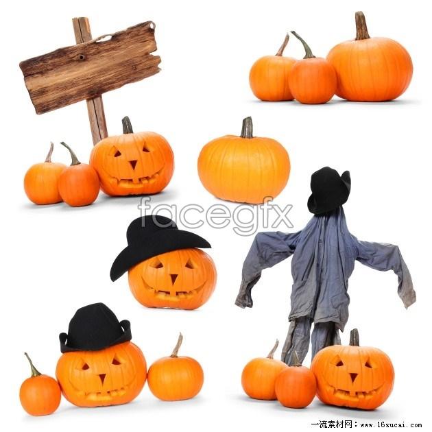 2011 Halloween Pumpkin pictures HD
