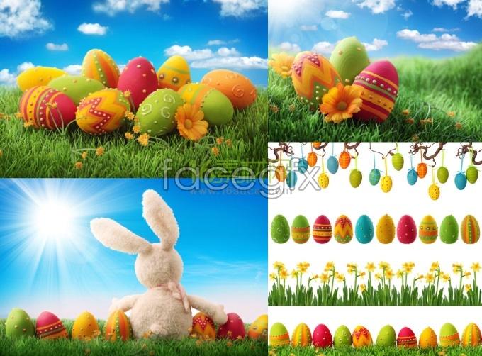 Easter egg HD Photo