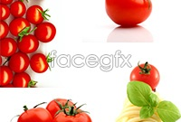 Bright tomato HD pictures