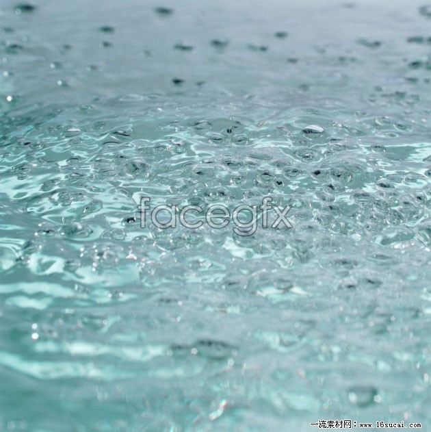 HD pond water drops picture