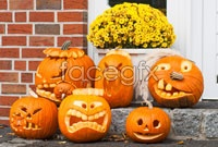 HD Halloween Jack-o-lanterns pictures