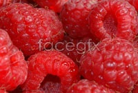 Download HD picture red raspberries