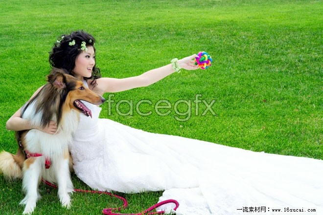 Meadow beauty wedding HD pictures