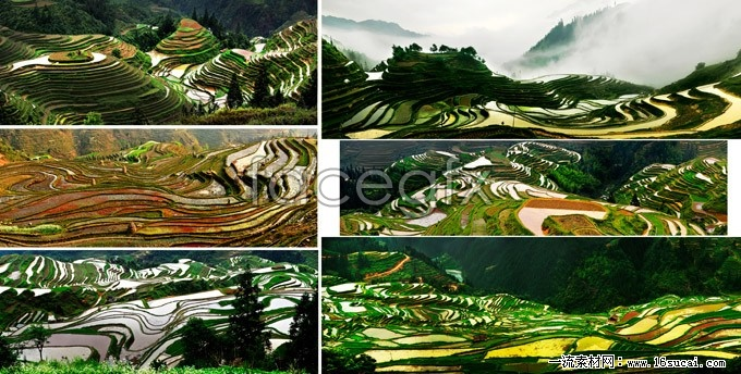 6 Dong long terraced landscape HD picture