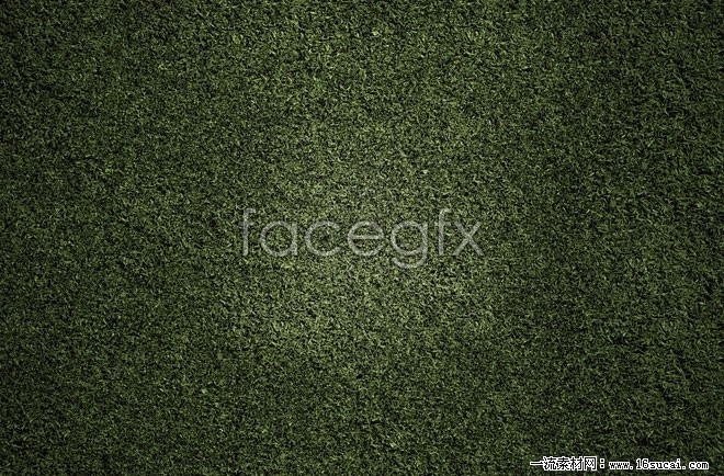 Green grass background high definition pictures