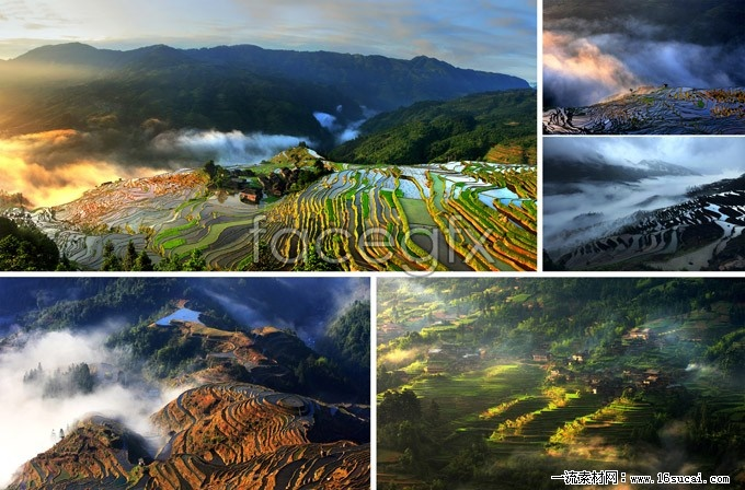5 terraced landscape HD photography pictures