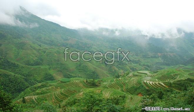 Moriyama terraced landscapes HD pictures