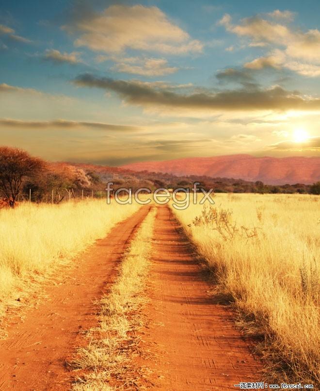 Wild grassland landscape high resolution images