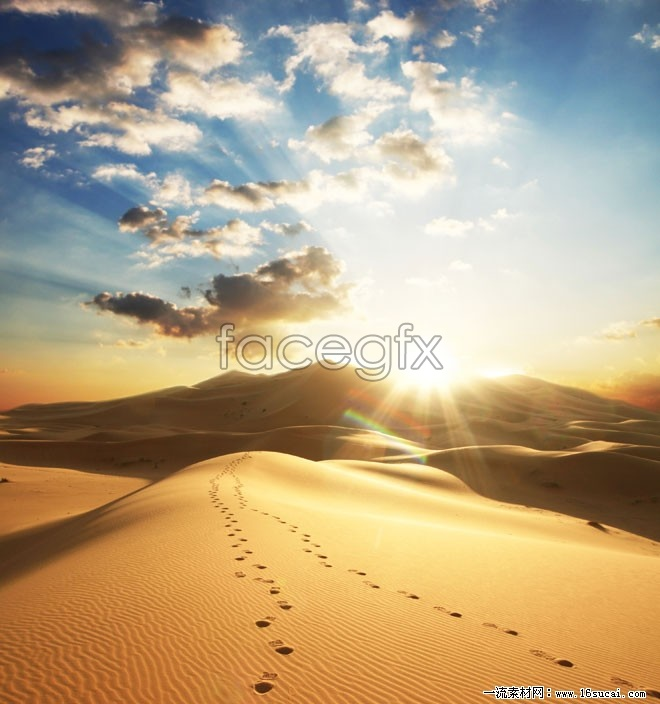 Evening desert trails high definition pictures