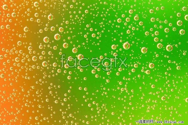 Green drops background high definition pictures