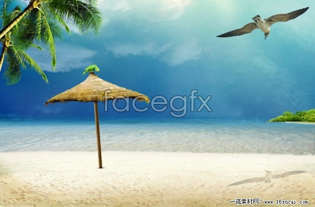 Sea view high definition pictures