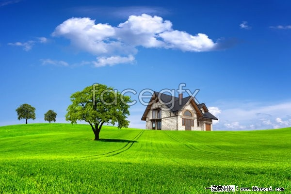Grass sky landscape high resolution images