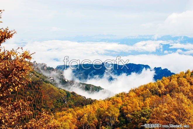 Mountain Maple view high definition pictures