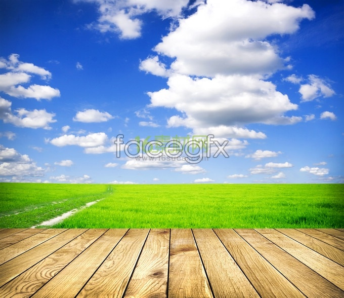 Windows XP Bliss HD picture