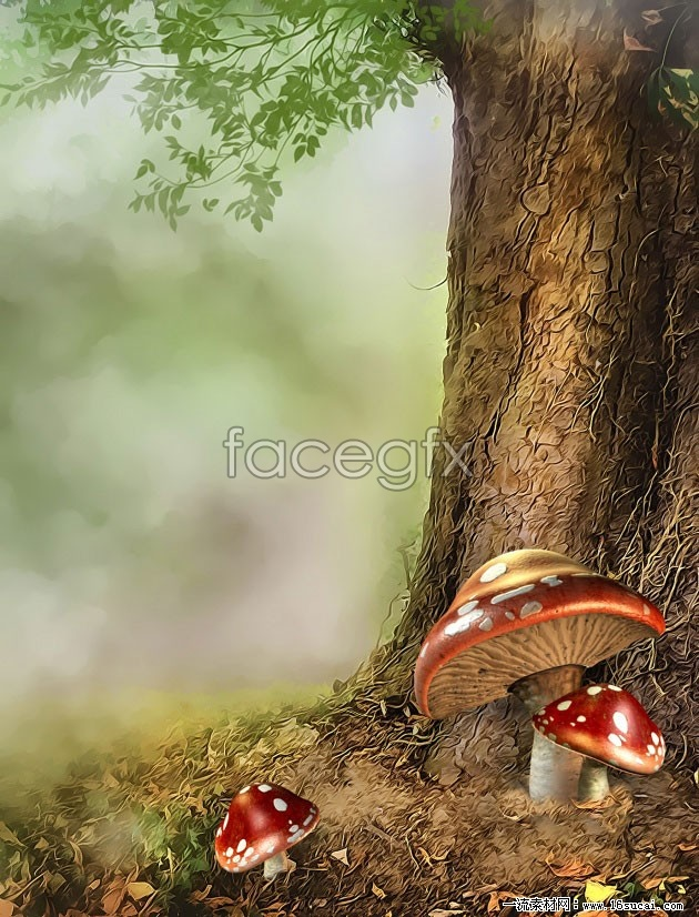 Forest dreams HD picture