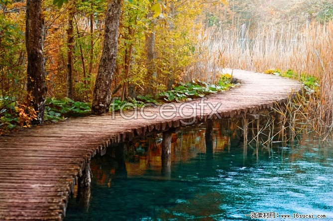 River wooden bridge scenic HD pictures