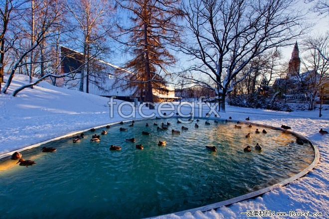 Winter landscape high definition pictures