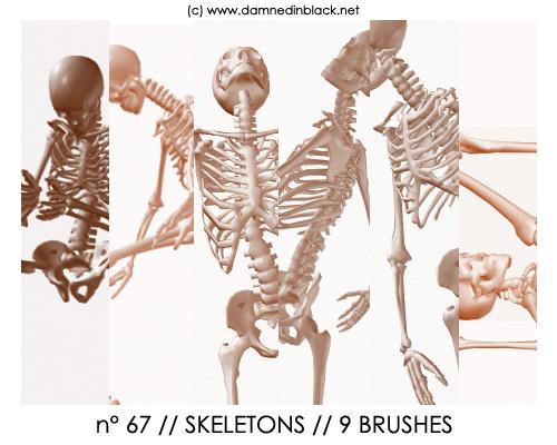 Projector skeleton free download