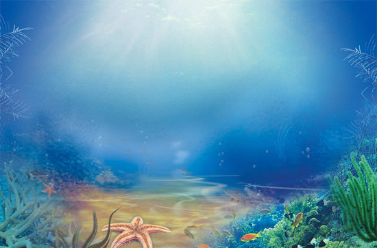 the beautiful underwater world psd for free download