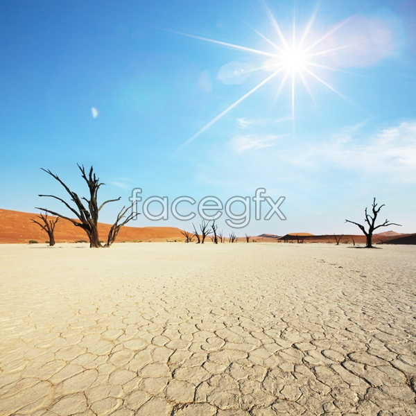 African desert landscape pictures