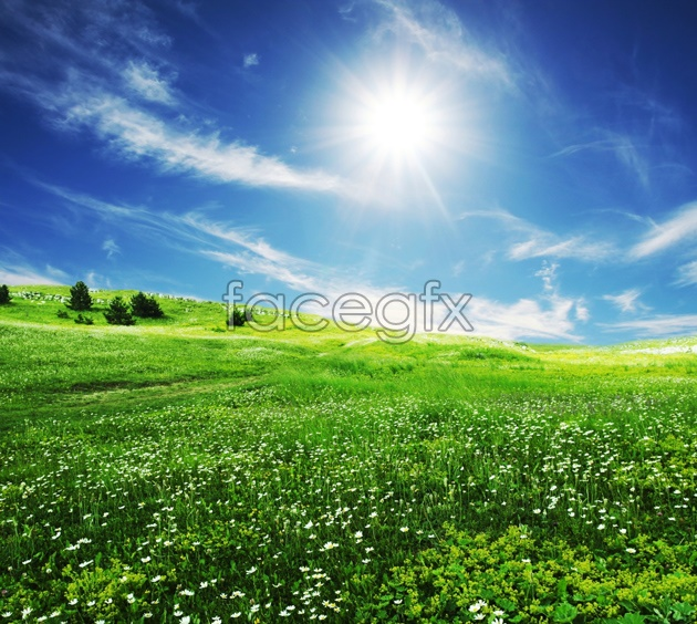 HD rural fields pictures