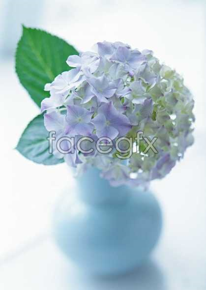 Purple ball flower arrangement