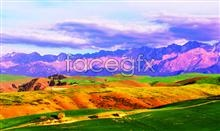 HD grassland scenery picture