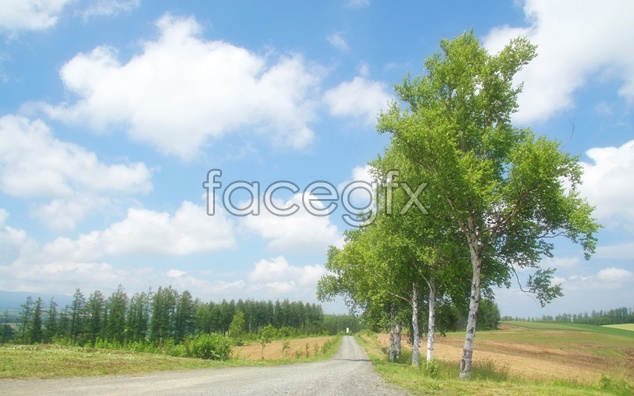 Road scenery picture material