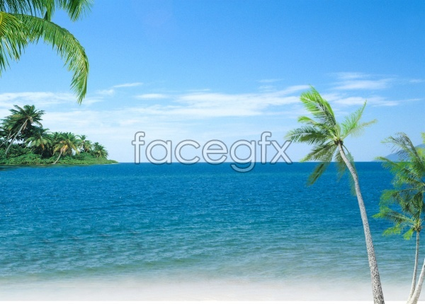 HD sea-view picture
