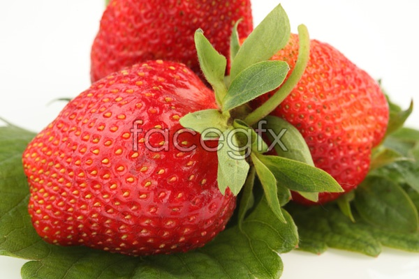 HD Strawberry picture material