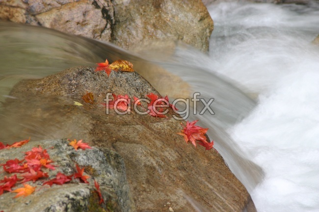 Small streams high definition pictures