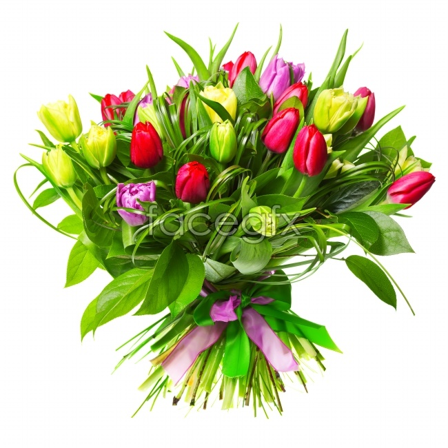 Bouquets of tulips picture