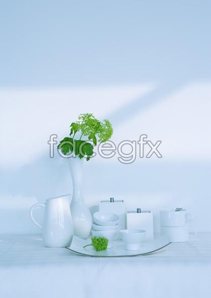 Indoor flower 2