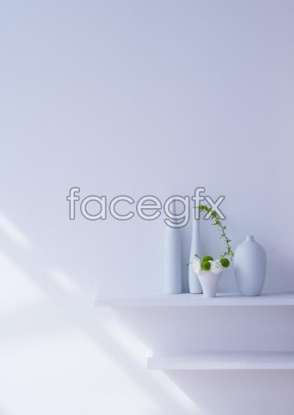 Indoor flower 47