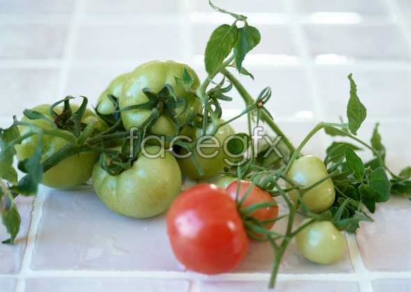 Fresh fruits and vegetables, 396